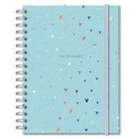 Caderno colegial 96 fls. Corações holográficos